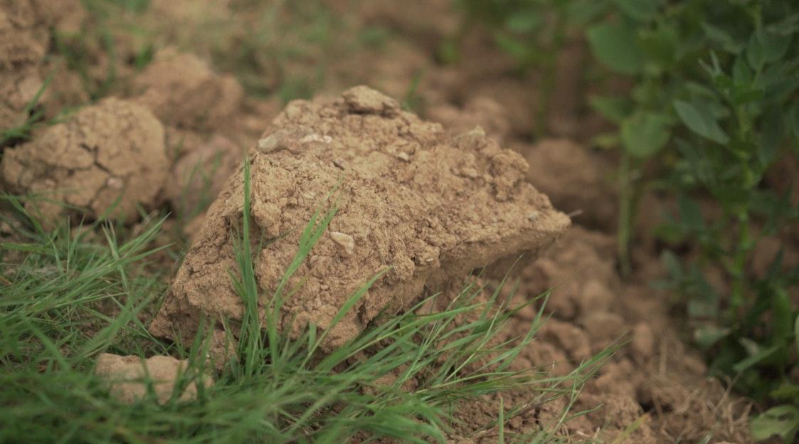 Marginalia soil